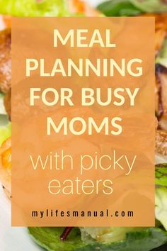 Meal Planning Binder and Beginners Guide for Busy Moms With Picky Eaters Meal Planning Binder, Family Meal Planner, Family Meals, Healthy Meals For Kids, Kids Meals, Healthy Snacks, Easy Meals, Healthy Recipes, Food Budget