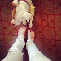 Ashley Avignone went #WithoutShoes with her pup