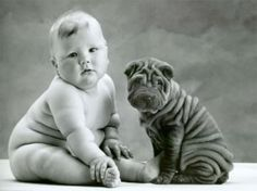 there are not many things that are cuter than a fat baby. unless it's a fat baby sitting next to a shar-pei.