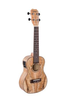 Amazon.com: Caramel CC600 Spalted Maple Concert Acoustic Electric Ukulele: Musical Instruments