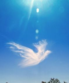 """Photograph by Erika """"Standing at Willow Canyon High School and looking towards… Angel Clouds, Sky And Clouds, Cloud Shapes, Angel Pictures, Angels Among Us, Natural Phenomena, Angel Art, Beautiful Sky, Heaven On Earth"""