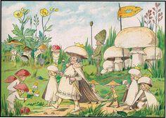 Mushroom Fairies by Adah Louise Sutton. Akron: Saalfield (1910)