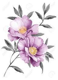 Картинки по запросу акварельные цветы png