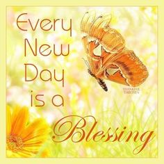 Every New Day Is A Blessing morning good morning morning quotes good morning quotes affirmations daily affirmations positive affirmations