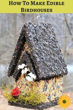 Here's how To make edible birdhouses your feathered friends will LOVE. You'll be delighted watching them too ;)