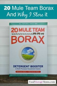 20 Mule Team Borax And Why I Store It