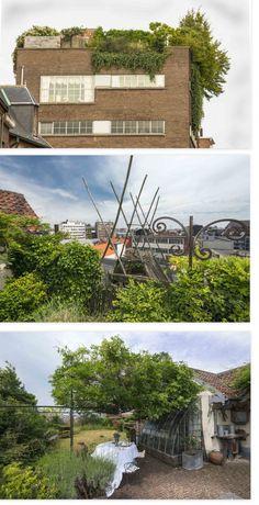 DAKTUIN op een oud pakhuis in Antwerpen, ontwerpster Nadine Wiggers. Lees het artikel op cashewstadstuinieren.nl