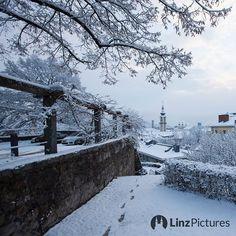 #linz #schnee  . . . #winter #kalt #linzpictures #igerslinz #linzer #upperaustria #oberösterreich #view #blick #winterwonderland #stadt #city #riverdanube #donau #snow #skyline #mood #weather #igersaustria #citylife #morning #nature #wanderlust #outdoor #cold #downtown #winterdienst . . .  @linzpictures . . . @linz_live