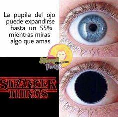 Stranger Things Characters, Stranger Things Funny, Stranger Things Netflix, Saints Memes, Harry Potter Tumblr, Otaku Anime, Just Do It, Fnaf, Funny Pictures