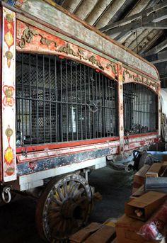 Circus parade wagon