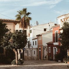 One of my fave spots in Palma  The old fishermen neighborhood preserved its village charm so well. Such an oasis in this busy city!