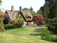 Ulovely thatched roof cottage
