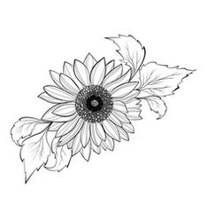 Shading Drawing, Flower Art Drawing, Sunflower Drawing, Sunflower Flower, Sunflower Tattoos, Sunflower Tattoo Design, Sister Tattoo Designs, Flower Tattoo Designs, Tattoo Outline