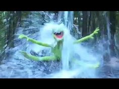 Kermit the Frog ALS Ice Bucket Challenge