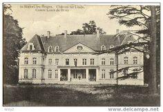 Brugge - Bruges - Sint-Michiels kasteel Ter Linde