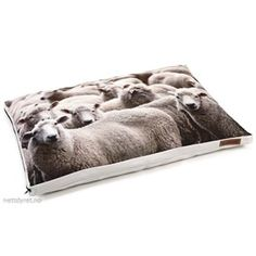 Design Fotoprint SHEEPS 94cm Hundepute Beige, Home Decor, Products, Textiles, Sheep, Homemade Home Decor, Decoration Home, Beauty Products, Interior Decorating