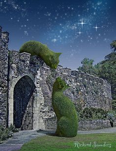 ~ The Topiary Cat meeting a friend over an ancient wall under the moonlight. This wall is actually the postern gate at Hertford Castle, England. By surrealist artist Richard Saunders. Garden Whimsy, Cat Garden, Garden Art, Garden Design, Landscape Design, Hertford Castle, Richard Saunders, Topiary Garden, Topiaries