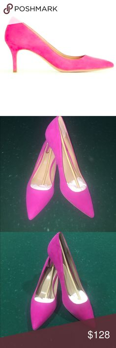 aa36488b066 NWOB Ann Taylor Deep Fuchsia Eryn Pumps size NWOB Ann Taylor Deep Fuchsia  Suede Eryn Kitten Heel Pumps in size Never worn! Heel measures about Bundle  and ...