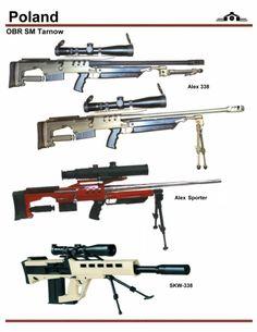 Alex 338 rifle