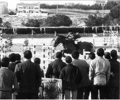 Santi Pardo antiguo hipodromo de alicante 1960