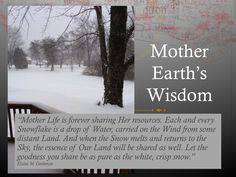 Mother Earth's Wisdom Inspirational Thoughts, Mother Earth, Wisdom, Author, Sky, Let It Be, Water, Quotes, Life
