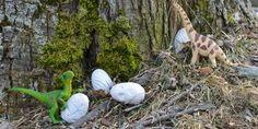 DIY Dinosaur Eggs: Hunt