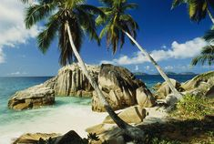 My dream vacation. The Seychelle Islands <3