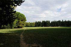Parco della Resistenza Riccione. Leggi il racconto di Davide http://www.riccionesocialclub.it/riccione-monamur/il-parco-della-resistenza