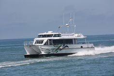 All Boats - Q-West Boat Builders Power Catamaran, Island Tour, Diesel Engine, New Zealand, Boats, Ships, Boat, Ship