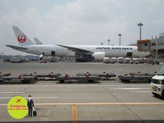 Japan airlines at Narita airport