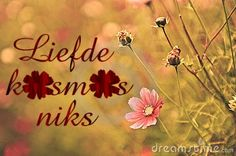 """Liefde kosmos niks"" beskikbaar in rou hout @ 15 cm hoog en 6 mm dik Netball Pictures, Xmas Quotes, African Crafts, Afrikaans Quotes, More Than Words, Projects To Try, Van, Creative, Mindset"