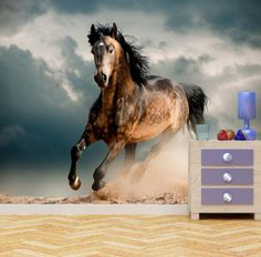 Horse Wall Mural Photo Wallpaper Wild Stallion by WallArtDesire
