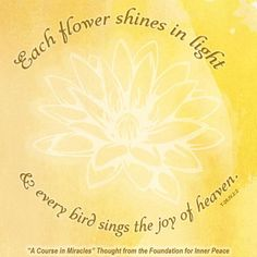 """""""Each flower shines in light and every bird sings the joy of heaven."""" (T-26.IV.2:2)  This is the ACIM Weekly Thought emailed to subscribers on May 24 by the Foundation for Inner Peace. A Course In Miracles, Inner Peace, Foundation, Calendar, Heaven, Relax, Joy, Thoughts, Bird"""