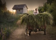Mother Takes Magical Photos of Her Kids With Animals on Her Farm