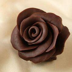 chocolate rose. beautiful and yummy
