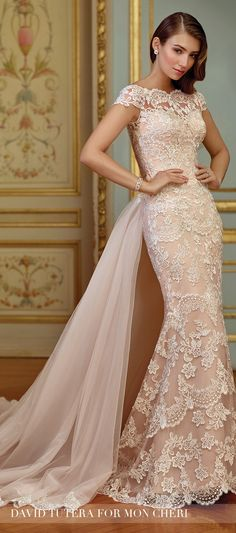 Blush Wedding Dress - David Tutera for Mon Cheri 2017