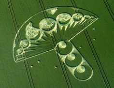 Cosmic Mushroom Crop Circle Tattoo Inspiration - very cool Crop Circles, Aliens And Ufos, Ancient Aliens, Circle Art, Circle Design, Nazca Lines, Moon Symbols, Alien Art, Glyphs