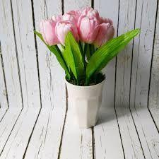 Toko Bunga Tulip Hari Ibu Tangerang Plants