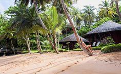 São Tomé e Príncipe: onde o tempo parou e não avisou Out Of Africa, Places To Visit, In This Moment, Outdoor Decor, Plants, Garden, Ghana, Weather, Voyage