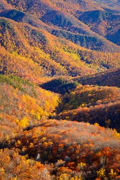Autumn view from Green Knob, Blue Ridge Parkway, North Carolina