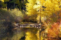 The Upper Truckee River, Lake Tahoe