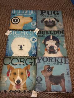 Even more dog pillows! 513-503-0261  feather insert available!