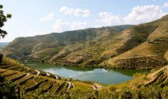 In Deep: Portugal's Douro Valley - via The Slow Road Travel 13-11-2017 | The illustrious Douro River has sculpted one of the most dramatically beautiful landscapes in all of Europe. It's here where you'll discover magnificent regions which boast delicious wines and delectable gastronomic specialties. Its rippling vineyards snake through the valley at all elevations, tracing endless lines of terraced vines that have been cultivated for over 2,000 years.
