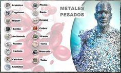 TU SALUD Y BIENESTAR : 9 alimentos para eliminar metales pesados del cuer...