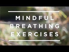 A step-by-step, real-time breathing exercise to help you learn the ancient contemplative practice of mindfulness. Led by mindfulness expert, research psychia. Mindfulness Based Stress Reduction, Presentation Video, Quote Of The Week, Funny Fashion, Just Breathe, Mindfulness Meditation, Emotional Intelligence, How To Feel Beautiful, Self Help