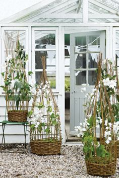 Willow Sweet Pea Baskets | Honeysuckle Life