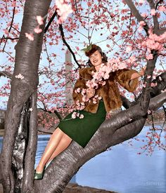 Shorpy Historical Photo Archive :: Signs of Spring (colorized): 1939