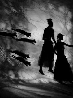 Seeking Refuge - Night Journey/ Susan Kae Grant