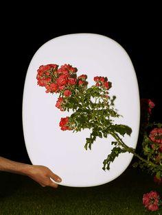 Image - Les plaques Milo Keller 2 Adrien Rovero Studio