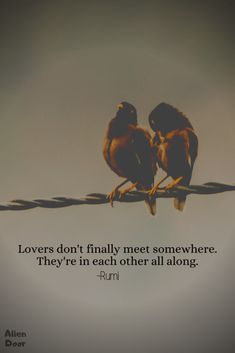 Rumi created magic with his poems. So, here is a list of best Rumi quotes on life, love, and strength that will help you transform yourself into better. Best Rumi Quotes, Rumi Quotes Life, Sufi Quotes, Reality Quotes, Spiritual Quotes, Wisdom Quotes, Words Quotes, Inspirational Quotes, Rumi Quotes On Love